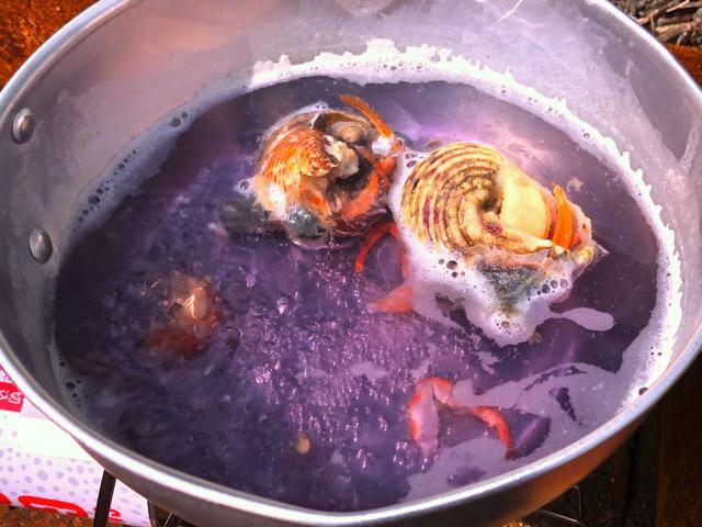 煮汁は紫色だけど!美味いんです。