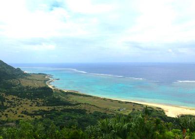 目的のイソギンチャクというかヤドカリは沖縄のイノー(遠浅の礁地)であればだいたいどこでも見つかる。