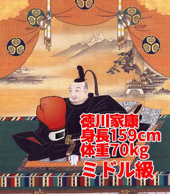 豆タンクのような体躯から繰り出される、家康の江戸幕府開府パンチ