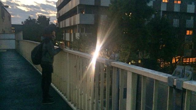 日没を待つハトコさん