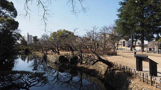石垣や天守がないため、城跡だということは意外と知られてない公園。