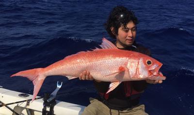 深海魚には脂がよく乗っていておいしいものが多い。たとえばハマダイの仲間だとかキンメダイ類だとか