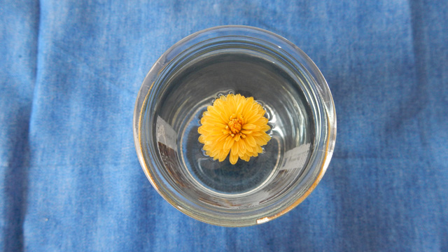 菊を浮べても素敵。