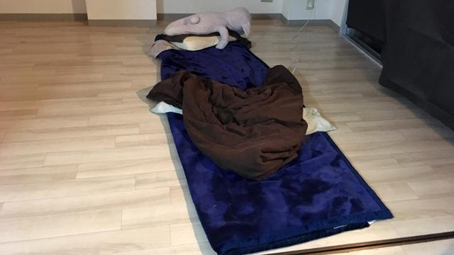 布団も捨てたので次の休日まで毛布を半分に折って寝る生活になってしまった。腰が死んだ。