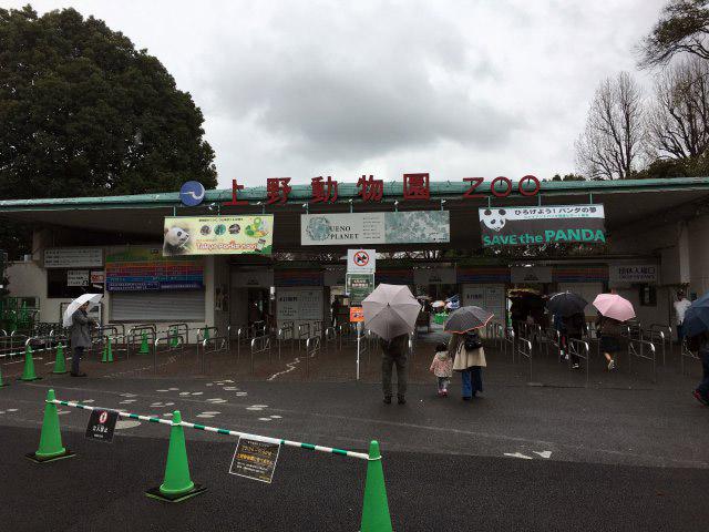 そんな八木山動物園で再現写真を……と思ったけど宮城まで足を伸ばすのをサボり、上野動物園に来ました。