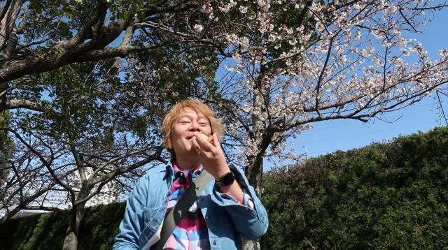 「わははは、もちだ。こりゃもちだ」 桜の木の下でピザを食って笑う