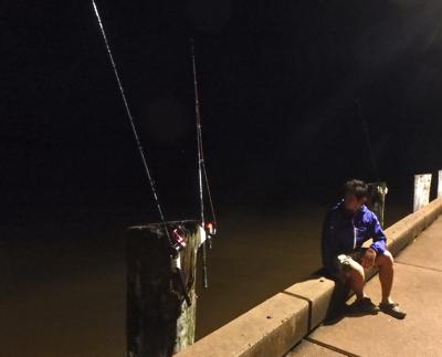 ハマギギは夜行性。たまたま本命の魚と生活時間帯がかぶっていたのが功を奏した。