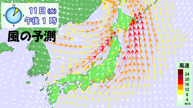 11日(水)は、各地で強い南風が吹く。今週は風にほんろうされる一週間になりそうだ。予報は、ほんろうされませんように。