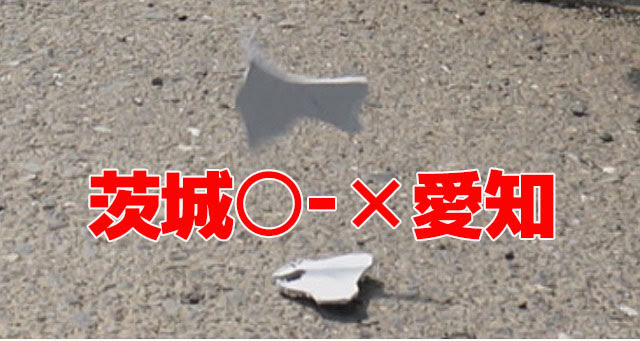 決勝Tの中では小兵対決になった茨城(面積24位)と愛知(面積27位)は、茨城が勝つ!