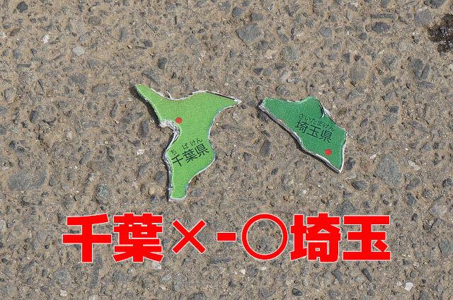 このあと埼玉に転がされた、チーバくん(千葉県)