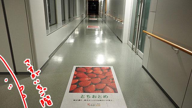 廊下には苺の紹介が続く。人はほぼおらず、しずか。