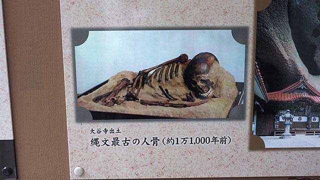 縄文時代の人骨も見られる。