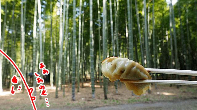 まさか竹やぶで食べれるとはね。