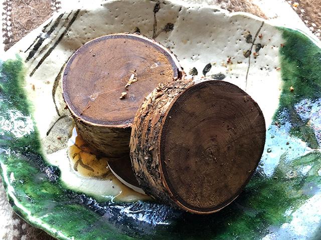 シラカバの木を食べていたというおっさんがいたらしい。食べよう