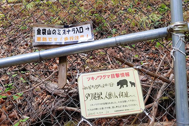 お互い出会いたくないものです。ホイッスルや大声を使って、熊に自分の存在を知らせながら歩きましょう。