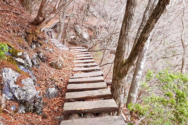 崖についた木道。右側に落ちると死にます。