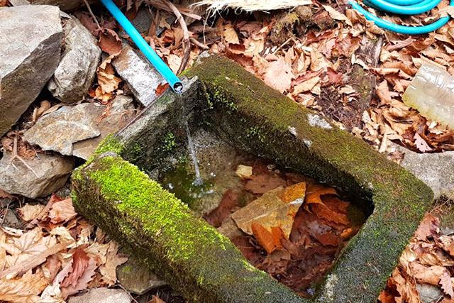 これだけ出ていれば上等です。酉谷で汲む必要なかったな(水場は状況が分からないので汲める時に汲むのが鉄則ですが)。