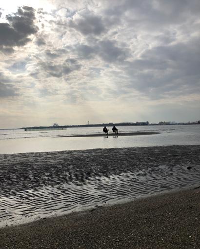 「葛西臨海公園」