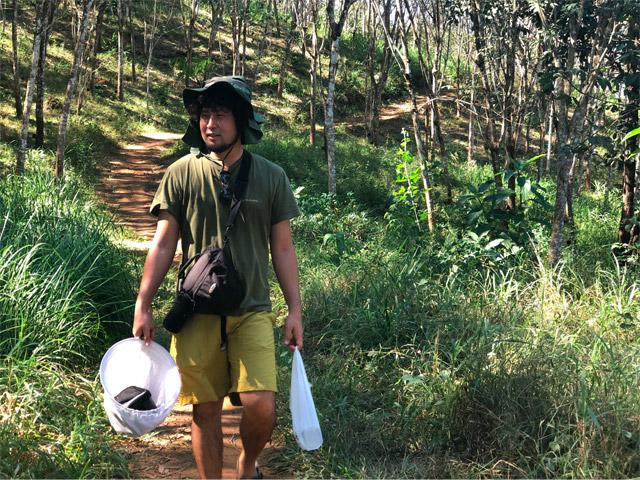 Tシャツ短パンで網を持って森の小径を歩く。あぁ~、小学生時代の夏休み思い出す。