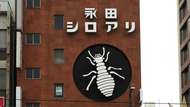 鹿児島の繁華街を睥睨する巨大シロアリの秘密があきらかに!