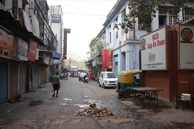 インド写真1、『野良犬が多いのもインドの特徴です。朝に清掃員が集めたゴミを、トラックが回収するんですが、それが犬の食卓や寝床になります。牛と違ってハードな扱いを受けていますが、なんとなく幸せそうです』