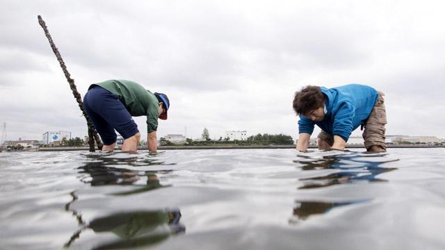 足の裏で貝を探す潮干狩りが、なんかすげえ楽しいんですよ! 写真:オカダタカオ