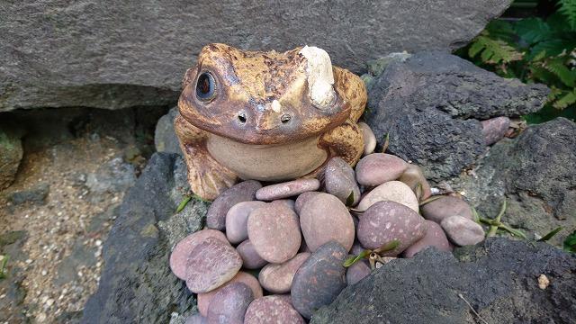 蛙飛び込む……のカエルも居る(ちなみに芭蕉が実際に持っていた蛙の石像は、近くの芭蕉記念館の方へ置かれている)。
