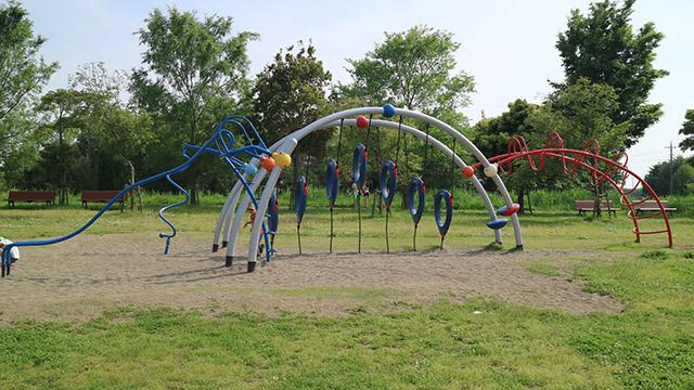 埼玉県羽生水郷公園わんぱく広場の高学年用の遊具。怖いと言うか、もはやSASUKEでは?