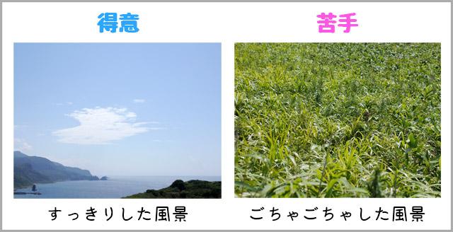 JPEGは「すっきりした風景」が得意で、「ごちゃごちゃした風景」が苦手