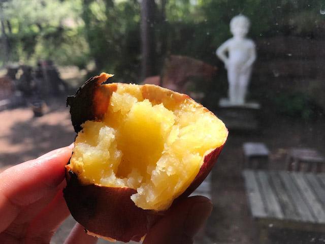 はい、サツマイモも焼けます