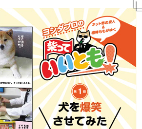 ちなみに、そんな柴犬ももと変なことをする連載を柴犬雑誌「Shi-Ba【シーバ】」で始めるので、よかったらぜひ。