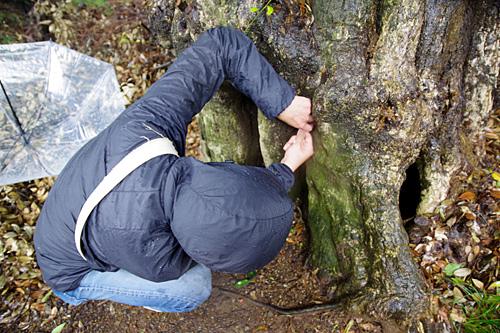 森の中に隠されたマイクロチップを探すスパイみたいだ。
