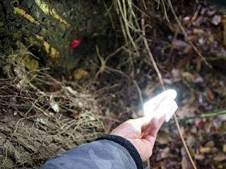 撮影にはCanCamの付録にあった自撮りライトが便利だよ。