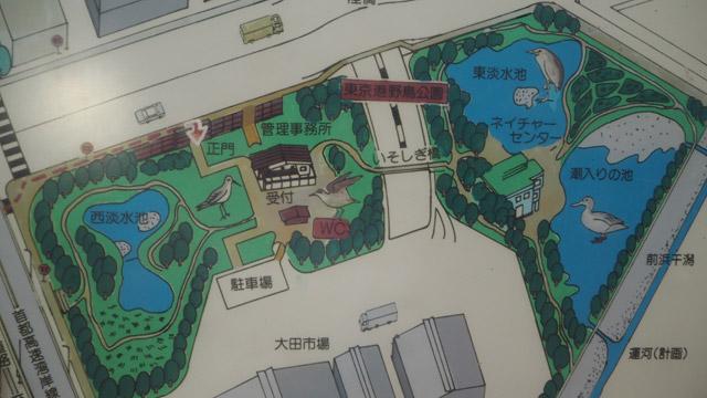ついでに手書きで描かれた「東京港野野鳥公園」にも興味が沸く