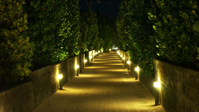 夜はフットライトで道がライトアップされる。これも見ごたえあり。