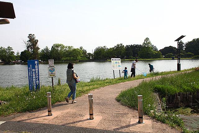 炎天下を20分くらい歩いて公園に行きました。行田って熊谷の隣だけあって暑いんですね。
