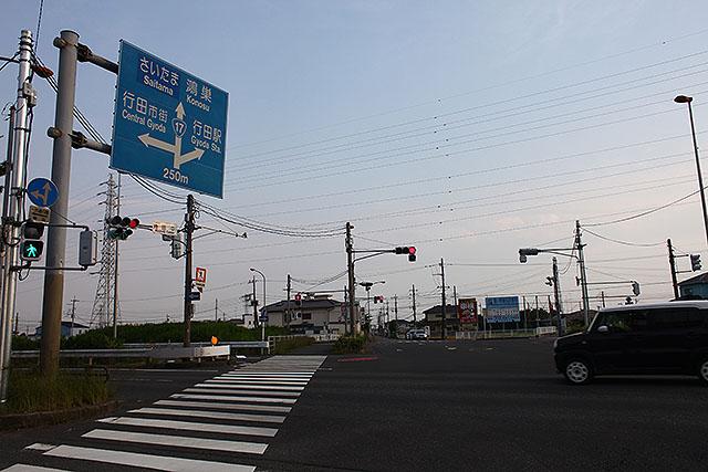 とても大きな青看板と、青信号のうちに渡りきれない歩行者用信号。