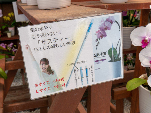 売店には水やりのタイミングを知らせる便利な道具も売られていました。サスティー。