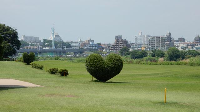 あとゴルフの練習場に、きれいなハート型の植え込みがあった。