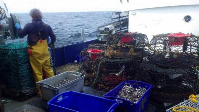 カゴ漁は深海生物に対して有効な方法だが、一般人には無理。主に法律的な面で。