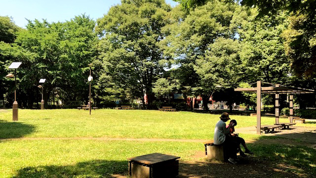 青々と茂った草と木立の奥