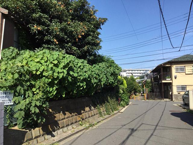 吉村さんの選んだ、なんでもない景色