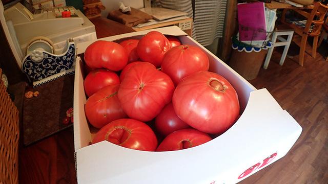 近くでとれたというトマトがはちきれそう。