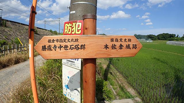 歩いてもすぐですよ!ということだったので本佐倉城跡まで行ってみることにした。地元の人頼りの旅みたいだ。