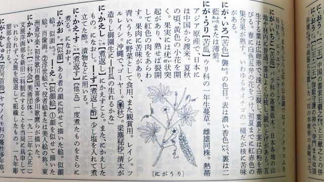 大片さんが描いた『広辞苑第六版』の「にがうり」の絵