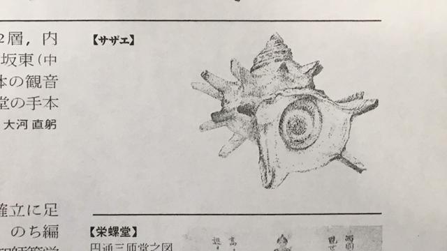 サザエ『世界大百科事典11 サ―サン』1988,平凡社