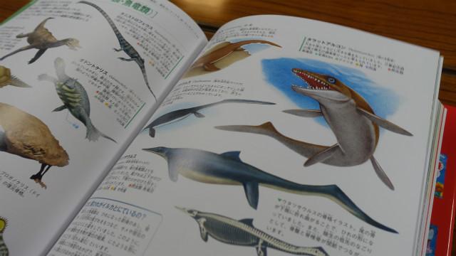『学研の図鑑LIVE 古生物』(学研)より