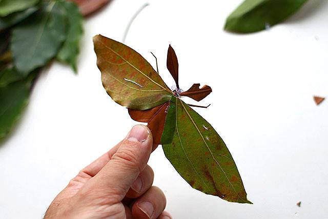 2017年、極力手を加えない方法を考えた『葉っぱで虫を作るとすごく楽しい』。12年前から比べると掛ける労力は少なく、それでいて良い感じに見えるテクニックを身に付けました。これが老獪でしょうか。