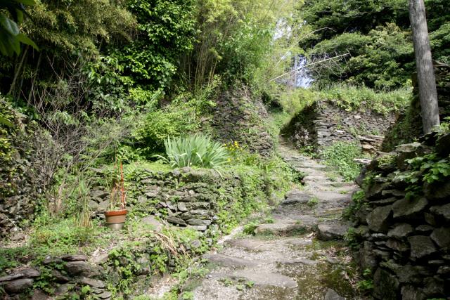里道に沿って立派な石積が連なっており、まるで城郭のようだ