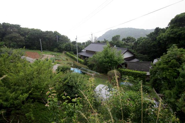 カトリック集落である蕨(わらべ)。家屋の前に防風林を築き、その背後を耕作地とする土地利用の在り方が特徴的だ